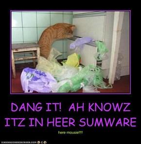 DANG IT!  AH KNOWZ ITZ IN HEER SUMWARE