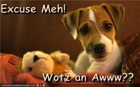 Excuse Meh!  Wotz an Awww??
