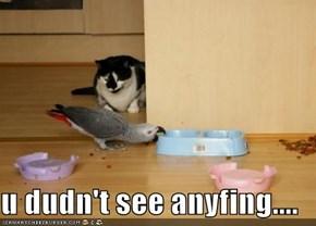 u dudn't see anyfing....