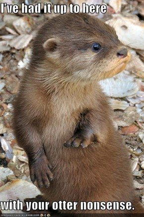 I've had it up to here  with your otter nonsense.