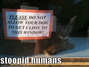 stoopid humans