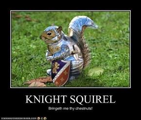 KNIGHT SQUIREL