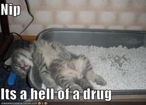 Nip  Its a hell of a drug