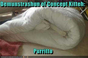Demunstrashun of Concept Kitteh:  Purritto