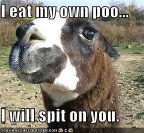 I eat my own poo...  I will spit on you.