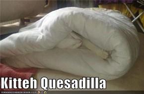 Kitteh Quesadilla