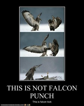 THIS IS NOT FALCON PUNCH
