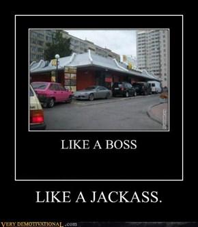 LIKE A JACKASS.