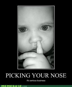 Picking your nose: It's serious business.