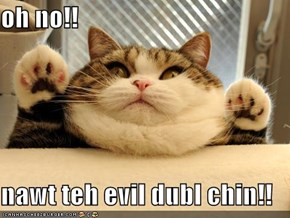 oh no!!  nawt teh evil dubl chin!!