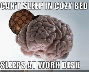CAN'T SLEEP IN COZY BED  SLEEPS AT WORK DESK