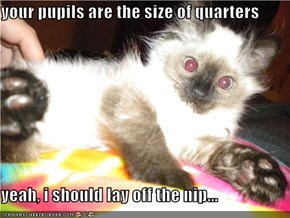 your pupils are the size of quarters  yeah, i should lay off the nip...