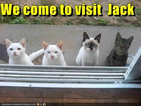 We come to visit  Jack
