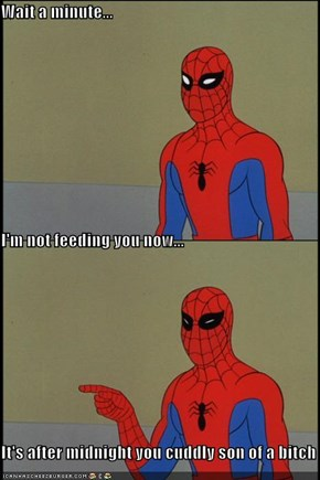 Spidey Follows the Rules!