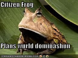 Citizen Frog  Plans wurld dominashun