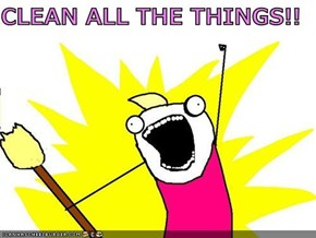 CLEAN ALL THE THINGS!!