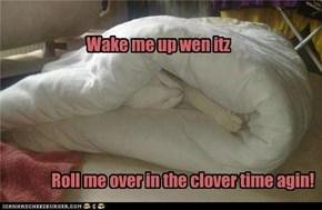 Itz roll me in Doona time.