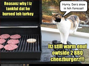 Reasonz why I iz tankful dat he burned teh turkey