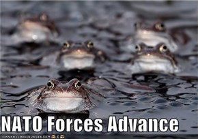 NATO Forces Advance