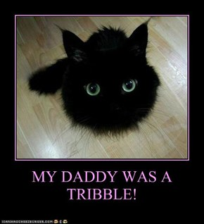 MY DADDY WAS A TRIBBLE!