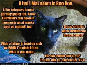 Roo Roo teh UnBasement Kitteh