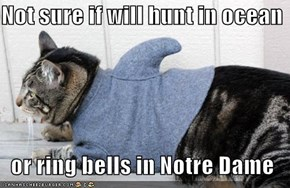 Not sure if will hunt in ocean