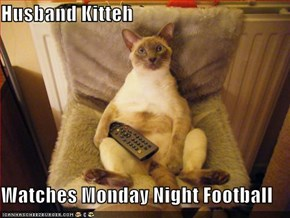 Husband Kitteh  Watches Monday Night Football