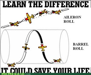 "Google ""Do an Aileron Roll"""