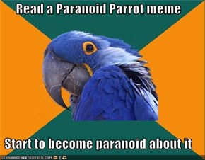 Read a Paranoid Parrot meme  Start to become paranoid about it