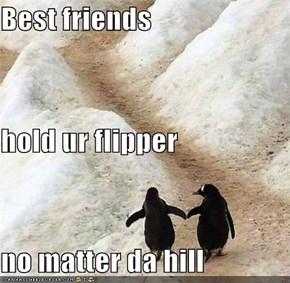 Best friends hold ur flipper no matter da hill