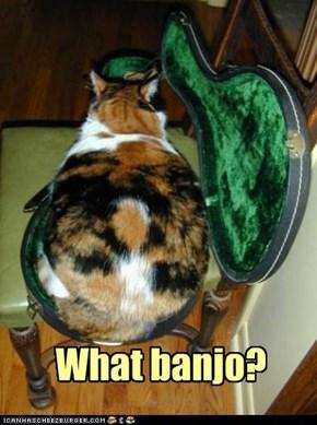 What banjo?