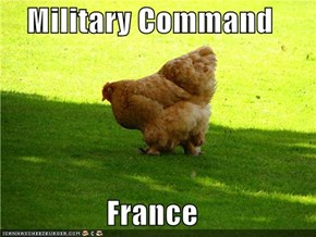 Military Command  France