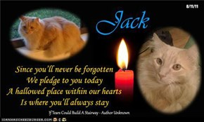 A Special Candle For Jack - Rest Now, Brave Boy