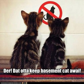 No Basement Cat Allowed
