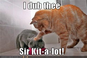 I dub thee  Sir Kit-a-lot!