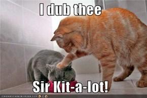 I dub thee  Sir Kit-a-lot!
