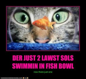 DER JUST 2 LAWST SOLS SWIMMIN IN FISH BOWL