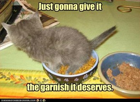 kitteh no like it