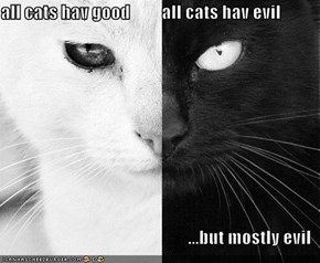 all cats hav good         all cats hav evil  ...but mostly evil