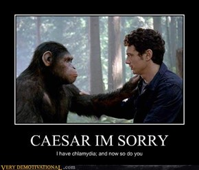 CAESAR IM SORRY