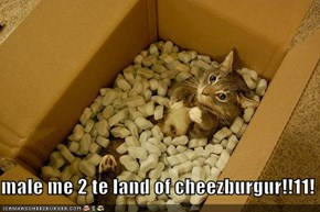 male me 2 te land of cheezburgur!!11!