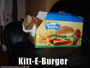 Kitt-E-Burger