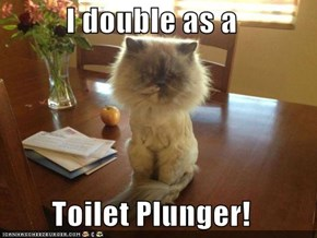 I double as a  Toilet Plunger!
