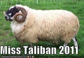 Miss Taliban 2011