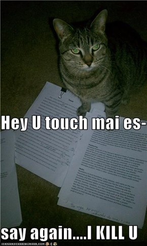 Hey U touch mai es- say again....I KILL U