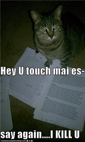 Hey U touch mai es- say again....I KILL U