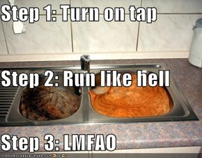 Step 1: Turn on tap