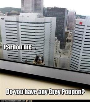 dis pigeon'z a bit gamey...