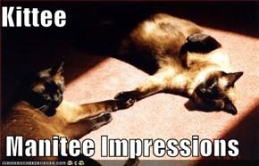 Kittee   Manitee Impressions