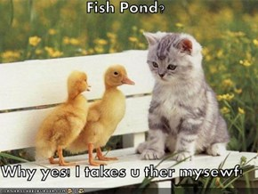 Fish Pond?  Why yes! I takes u ther mysewf!